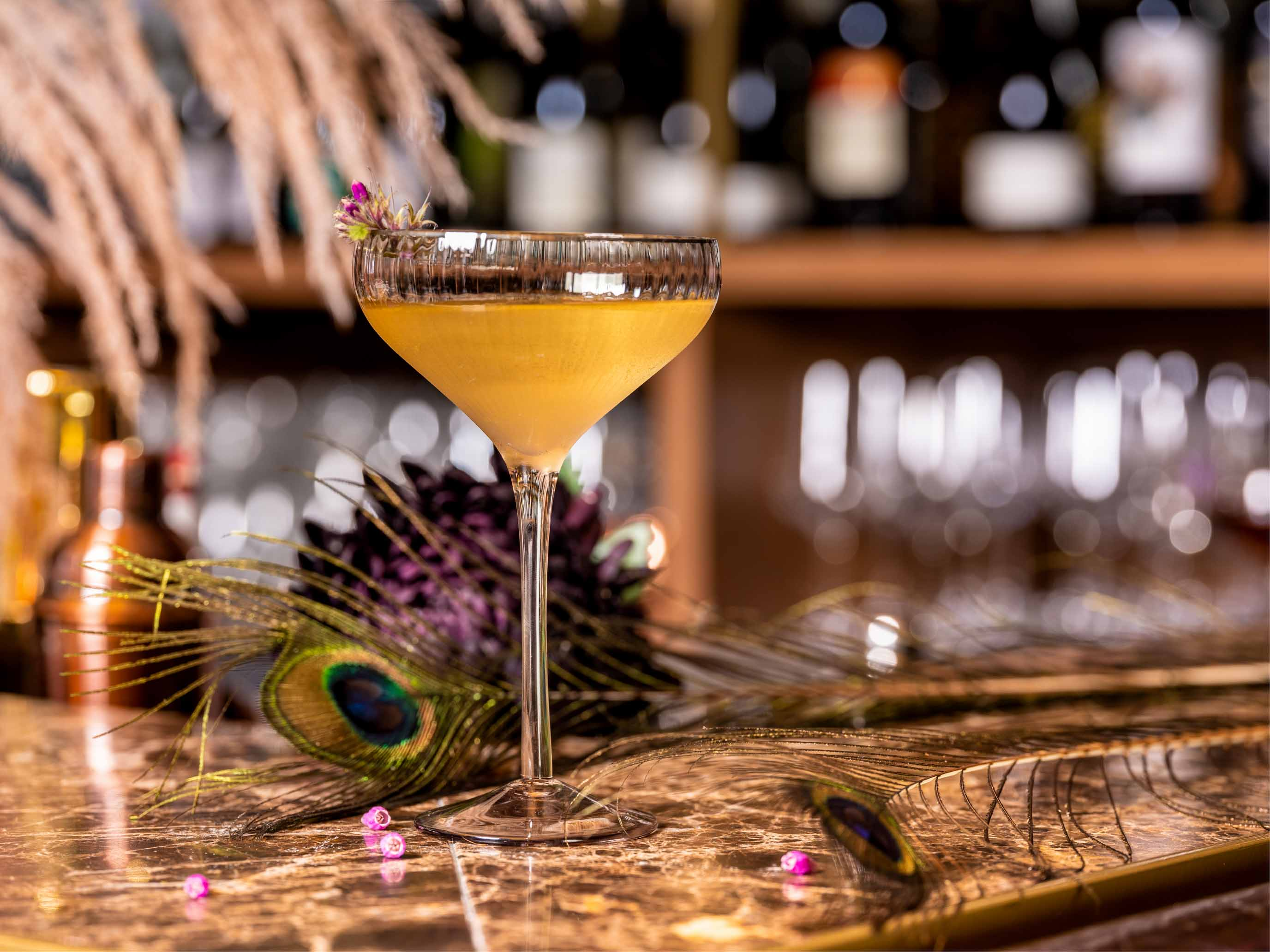 Mvsa cocktail 4